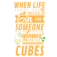 Eine Flasche Gin, Geschenk, T-Shirt, Sprüche, Tee