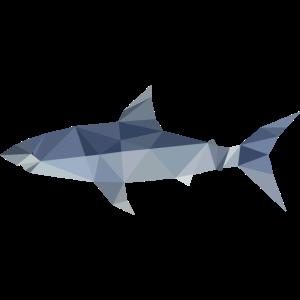Polygon Hai