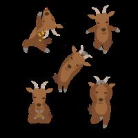 Yoga Tiere - Ziege