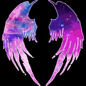 Engel Teufel Flügel Himmel Hölle 2reborn