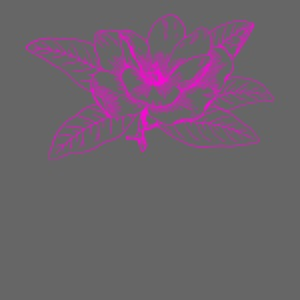Camisetas y accesorios de flor color rosada