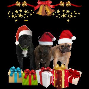 Weihnachten - Hunde und Geschenke