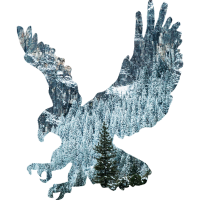 Falke vor Bergmotiv
