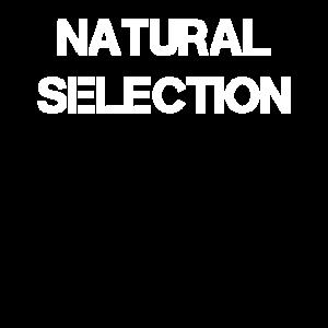 Natural Selection Natürliche Selektion