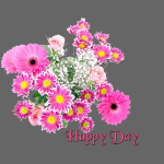 Happy Day Blumen