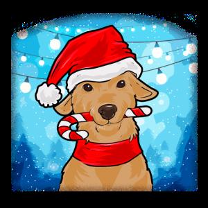 Niedlicher Weihnachtlicher Hund mit Santa Hut