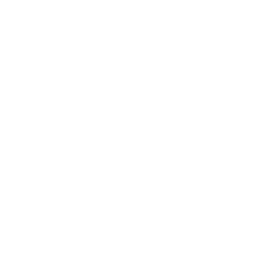 Walking cat Katze