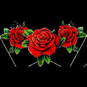 squad roses