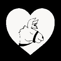 Schönes Lama Herz Liebe Alpaka Lama Cool Geschenk
