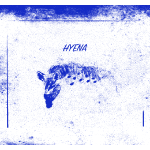 Hyena Blue