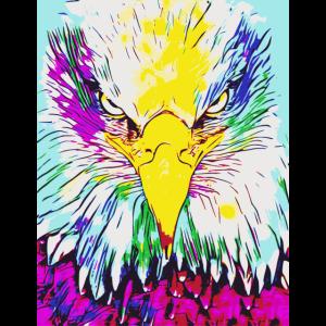 Adler Falke 2reborn