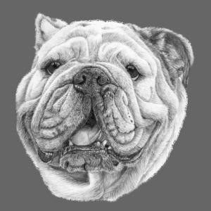 EngelskBulldog M