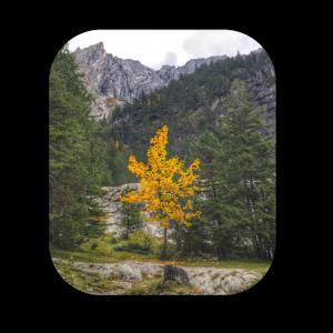 Der Goldene Herbst. Geschenkidee für Wanderer