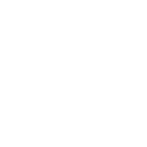Punkrock E-Gitarre