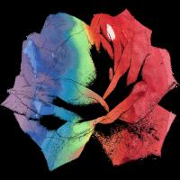 Rose Aquarell Regenbogen Kontur Verlauf