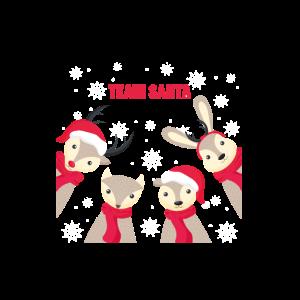 Xmas Merry Christmas Team Santa