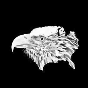 Adler auf USA Flagge Amerika Shirt