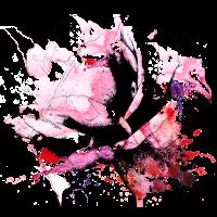 Rose Aquarell Verlauf Blume Blüte Kontur