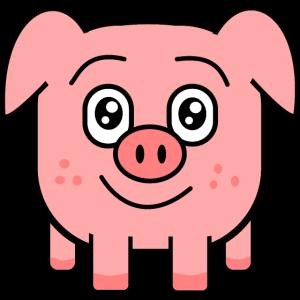 square pig
