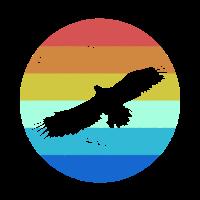 Farbkreis Adler Wildtier Wildtiere Waldbewohner