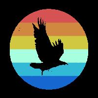 Farbkreis Adler Wildtier Wildtiere Waldbewohner Ti