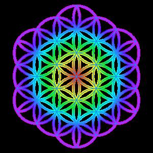 Blume des Lebens 8
