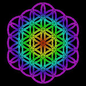 Blume des Lebens 7