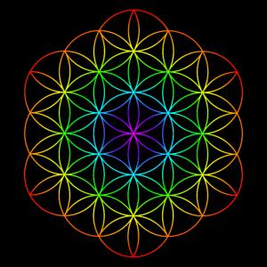 Blume des Lebens 5