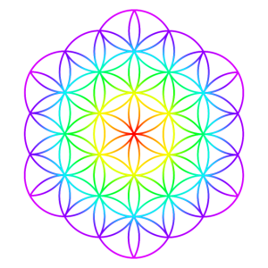 Blume des Lebens 4