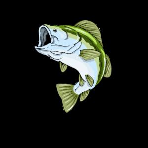 Angeln Fisch Fischen Fischerei Sportfischer