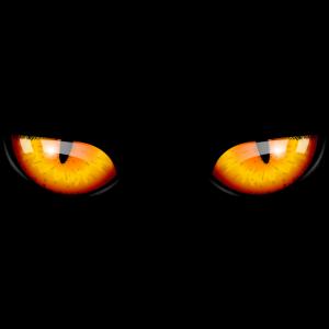 Halloween Fasching Kostüm Katze Kater Augen