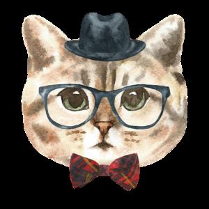 Nerd Katze