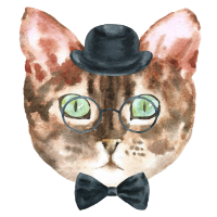 Sanfte Katze