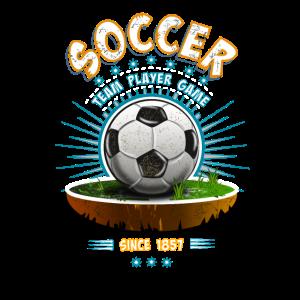 Fußball, alter Lederball auf Rasen
