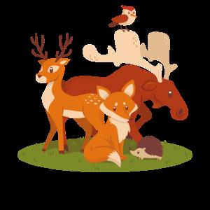 Kinder Waldtiere Reh Elch Fuchs Igel Vogel