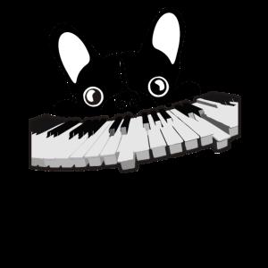 Hund Keyboard Klavier piano