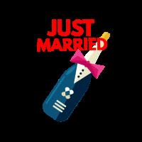just married frisch verheiratet hochzeitsfeier