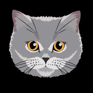 Britisch Kurzhaar Katze Geschenk Mann Frau BKH