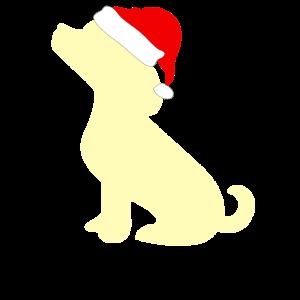Hunde Welpe Weihnachtsmuetze Weihnachten Labrador