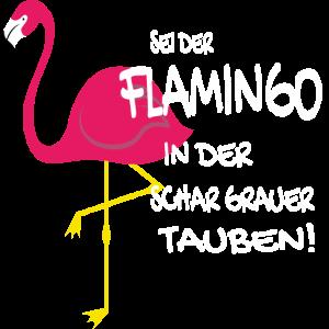 DER EINE FLAMINGO ZWISCHEN DEN GRAUEN TAUBEN
