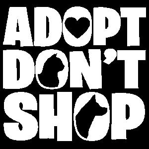 Hund Adoption adoptieren Tierfreund Katze Haustier