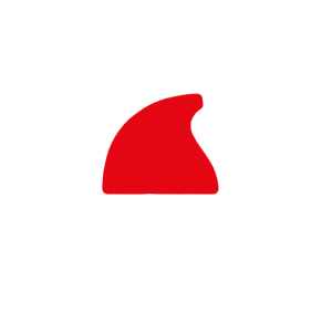 Weihnachtshemd