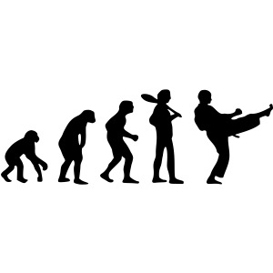 Karate Evolution