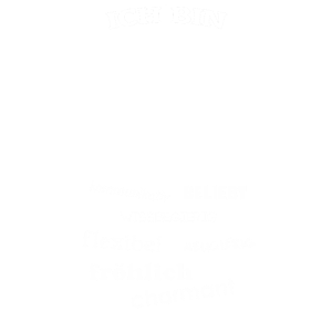 ZWILLING - STERNZEICHEN
