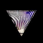 Zebra im Dreieck