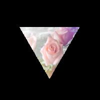 Rosen im Dreieck
