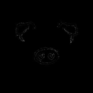 Tier Kopf Schwein