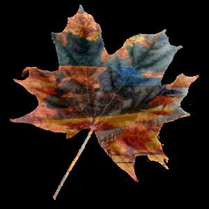 Herbst Blatt Landschaft Geschenkidee