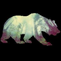 Baer Wald Geschenkidee Wildleben
