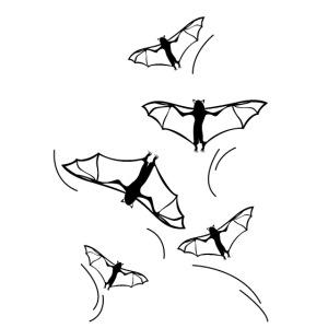 pipistrelli halloween